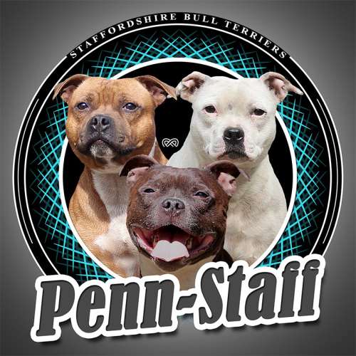 Penn-Staff